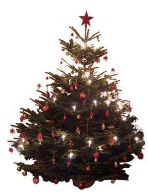 deutschland lese am weihnachtsbaum die lichter brennen. Black Bedroom Furniture Sets. Home Design Ideas